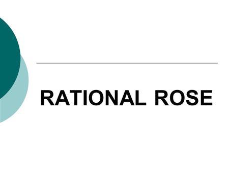 Rational Rose Crack